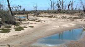drought-AU-(1)